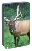 Canadian Rockies # 7 Portable Battery Charger