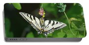 Canadian Tiger Swallowtail Butterfly-underside Portable Battery Charger