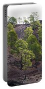 Canary Pines Nr 2 Portable Battery Charger