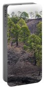 Canary Pines Nr 3 Portable Battery Charger