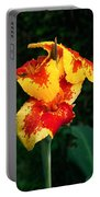 Cannas With Dew Portable Battery Charger