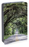 Canopied Street Portable Battery Charger