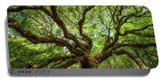 Canopy Of Color At Angel Oak Tree  Portable Battery Charger