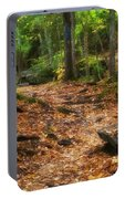 Canyon Falls Trail 1 Portable Battery Charger
