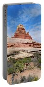 Canyonlands Spring Landscape Portable Battery Charger