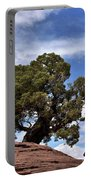 Canyonlands Tree Portable Battery Charger