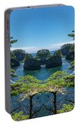 Cape Flattery Reflection Portable Battery Charger