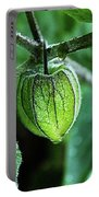 Cape Gooseberry In July Portable Battery Charger