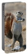 Cape Ground-squirrel  Portable Battery Charger