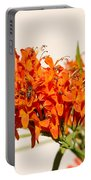 Cape Honeysuckle - The Autumn Bloomer Portable Battery Charger