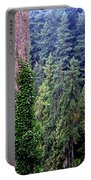 Capilano Canyon Ivy Portable Battery Charger by Will Borden