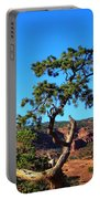Capitol Reef 6 Portable Battery Charger