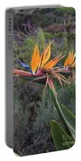 Captivating Bird Of Paradise In Full Bloom Portable Battery Charger