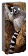 Captive Ring Tailed Lemur Perched In A Stone Tree Portable Battery Charger