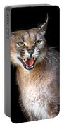Caracal Hissy Fit Portable Battery Charger