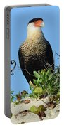 Caracara Portrait Portable Battery Charger