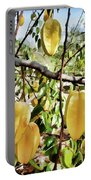 Carambola Fruit On The Tree Portable Battery Charger