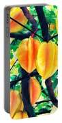 Carambolas Starfruits Portable Battery Charger