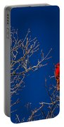 Cardinal Against Blue Sky Portable Battery Charger