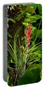 Cardinal Airplant Portable Battery Charger