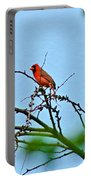 Cardinal Calling Portable Battery Charger