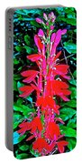 Cardinal Flower Near Schroon River In The Adirondacks-new York  Portable Battery Charger