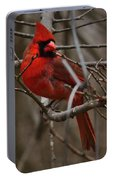 Cardinal In Spring Portable Battery Charger