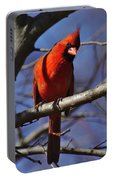 Cardinal On Watch Portable Battery Charger