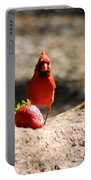 Cardinal Rule Portable Battery Charger