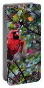 Cardinal Troy Portable Battery Charger