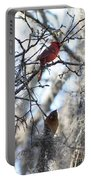 Cardinals In Mossy Tree Portable Battery Charger