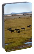 Caribou Herd Portable Battery Charger