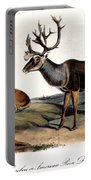 Caribou (rangifer Caribou): Portable Battery Charger
