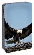Cape Vincent Eagle Portable Battery Charger