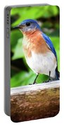 Carolina Bluebird Male Portable Battery Charger