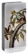 Carolina Grey Squirrel Portable Battery Charger