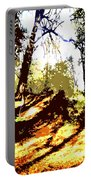 Carpet Of Autumn Leaves Portable Battery Charger by Patrick J Murphy
