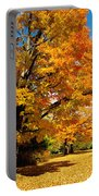Carpet Of Leaves Portable Battery Charger