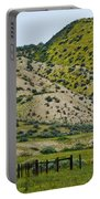 Carrizo Plain Daisy Hills Portable Battery Charger