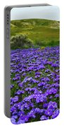 Carrizo Plain National Monument Wildflowers Portable Battery Charger