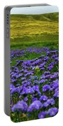 Carrizo Plain Wildflowers Portable Battery Charger
