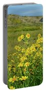 Carrizo Plain Yellow Daisies Portable Battery Charger