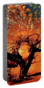 Casa Grande Abstract II Portable Battery Charger
