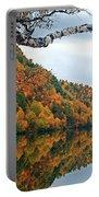 Cascade Birch Portable Battery Charger