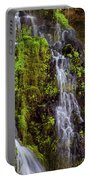 Cascades Of Burney Falls Portable Battery Charger