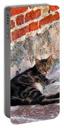 Cat Against Stone Portable Battery Charger