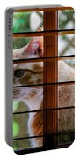Cat At The Window Portable Battery Charger