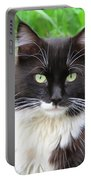 Cat Lawrence Portable Battery Charger