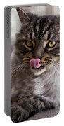 Cat Of Nicole 2 Portable Battery Charger