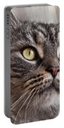 Cat Of Nicole 4 Portable Battery Charger